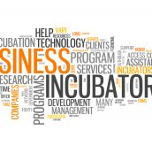 Are Startup Incubators Right for You?